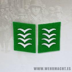 Parches de cuello Felddivision, Hauptgefreiter/Oberfeldwebel