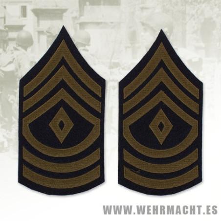 """Galón """"First Sergeant"""" (Lana)"""